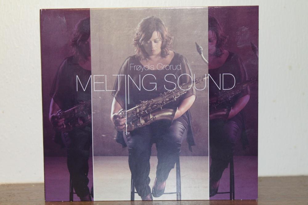 Frøydis Grorud: MELTING SOUND