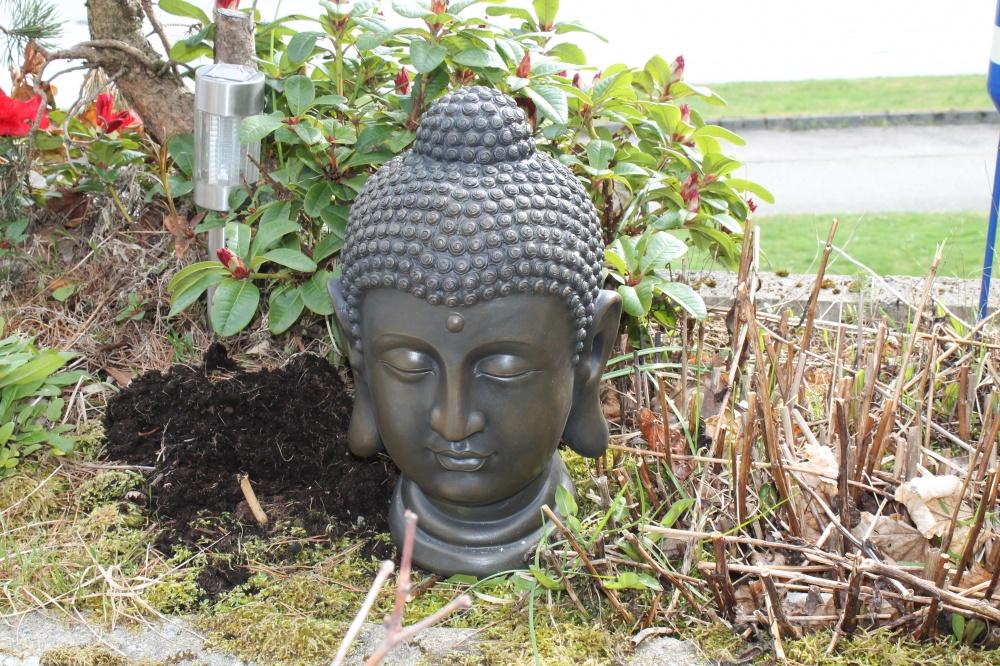 BUDDHA HODE